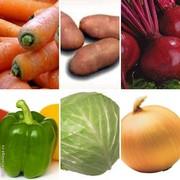 Продаю Овощи